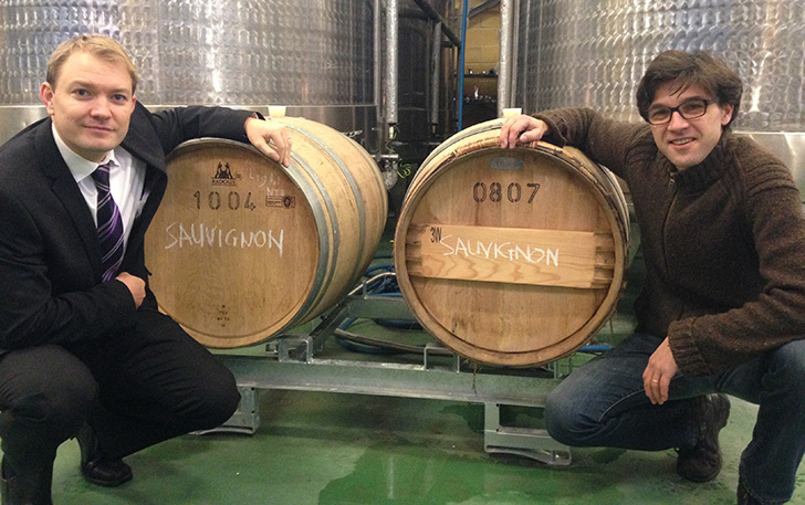 Denbies Sauvignon In Barrels