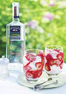 Waitrose Gin & Tonic