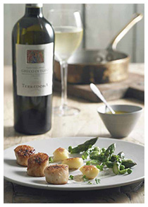 Roast scallops with potato gnocchi and truffle emulsion Terredora Greco di Tufo 2012, Campania