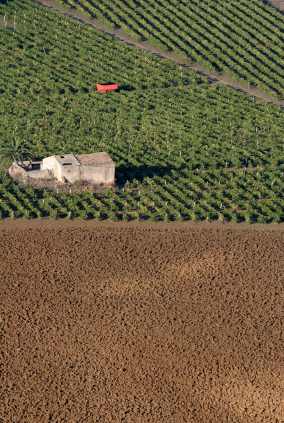 Sicilian Vineyard ploughed soil country house