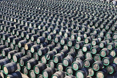 Barrels Wine Vintage